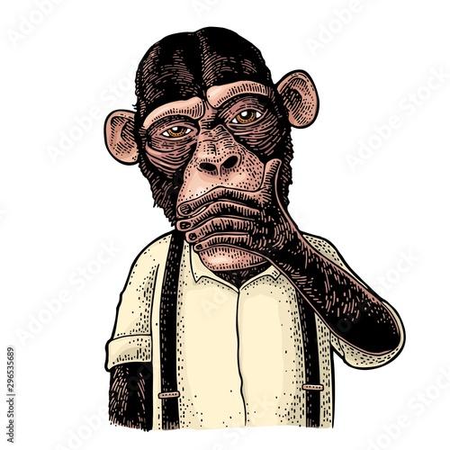 Fotomural  Three wise monkeys