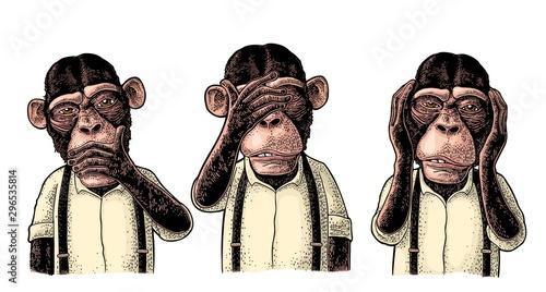 Fotografía Three wise monkeys
