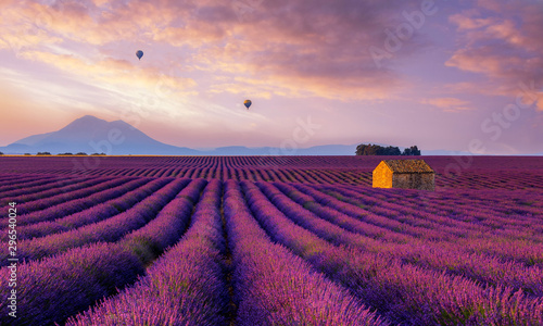 Deurstickers Lichtroze Lavender Dream - Valensole France