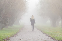 Young Blonde Woman In Black Coat Walking On Asphalt Sidewalk Through Alley Of Trees In Mist. Foggy Air. Peaceful Atmosphere. Spending Time Alone In Early Morning. Back View.