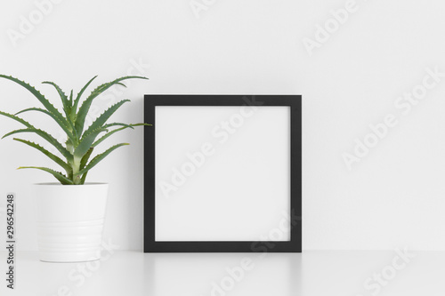 Fototapety, obrazy: Black square frame mockup with a aloe vera in a pot on a white table.