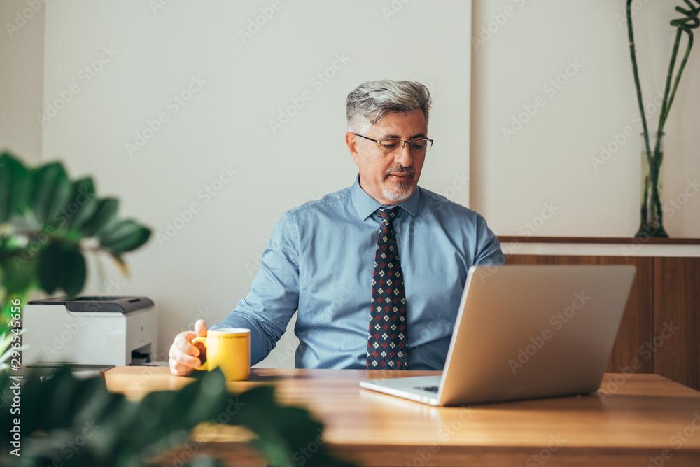 Fototapeta senior manager using laptop computer sitting desk in his office