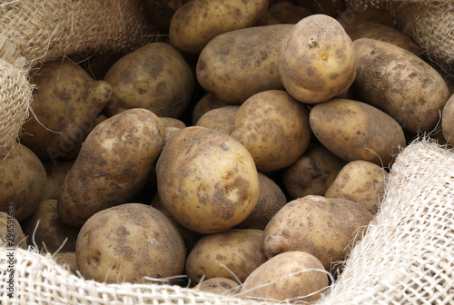 raw potatoes in the jute sack Fototapeta