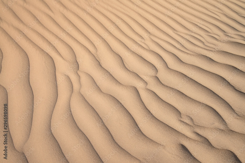 Fototapety, obrazy: ripples in the sand