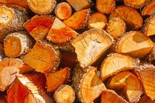Firewood -  Chopped Wood Logs