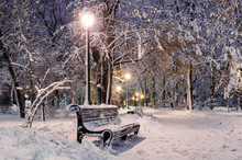 Winter Evening In The Park, Snow-covered Benches, Bright Lights Illuminate White Snow, New Year's Eve With Snow, Kiev, Ukraine