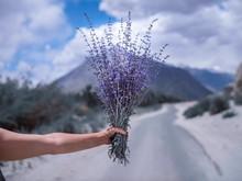 Handfull Of Russian Sage