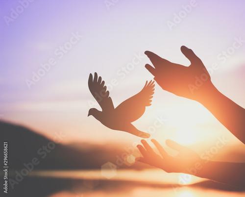 Fototapeta Woman praying and free bird enjoying nature on sunset background, hope concept .soft focus picture.cinematic tone obraz na płótnie