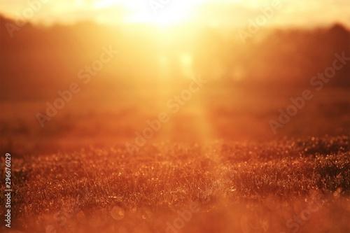Montage in der Fensternische Rot kubanischen sunrise on the lawn