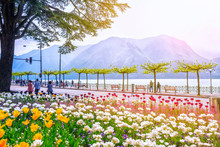 Promenade Of Luxury Resort Lugano. Beautiful View Of The Lake Surrounded By Alps Mountains And Blooming Flowers Tulips On A Spring Morning, The Canton Of Ticino, Switzerland.
