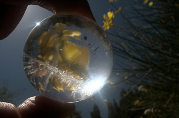 Quartz sphere with inclusions lensing a scene in a Tuscan garden