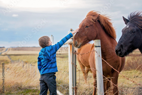 Fotomural Beautiful child and horses in the nature, early in the morning on a windy autumn