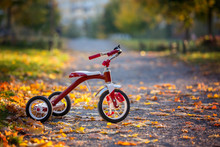 Red Tricycle In The Park On Sunset, Beautiful Day