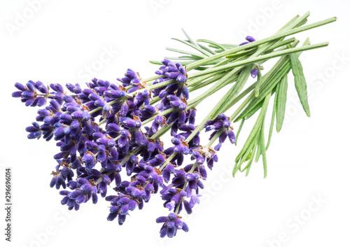 Türaufkleber Makrofotografie Bunch of lavandula or lavender flowers isolated on white background.