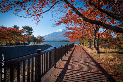 Foto auf Gartenposter Dunkelbraun Mt. Fuji over Lake Kawaguchiko with autumn foliage at daytime in Fujikawaguchiko, Japan.