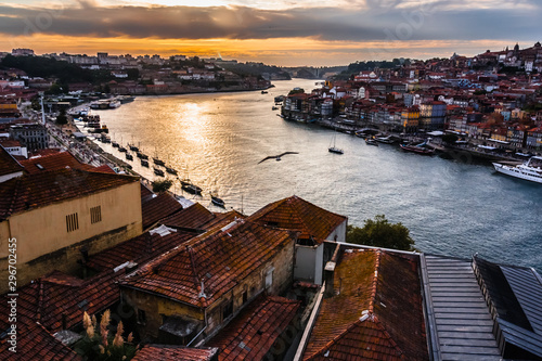 Poster Marron chocolat Sunset light on Douro River from Serra do Pilar. Lanscape of Porto old town, river boats and flying seagull