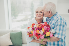 Portrait Of Her She His He Two Nice Lovely Cheerful Cheery Sweet Tender People Granny Receiving Big Fresh Floral Tulips Congrats Greetings Spring Springtime In Light White Interior Living-room House