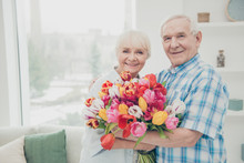 Closeup Photo Of Two Adorable Aged People Cute Pair Anniversary Holiday Surprise Big Red Tulips Bunch Flat Indoors