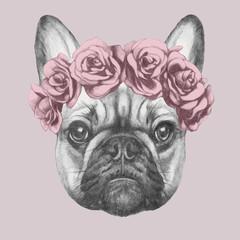 Portrait of French Bulldog with floral head wreath. Hand drawn illustration o...