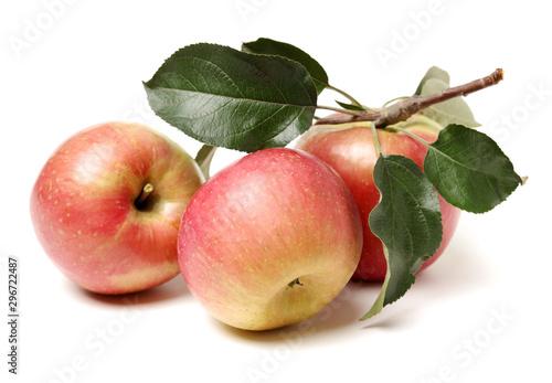 Fototapeta Rose apple with leaves isolated on white background obraz