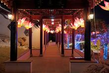 Lotus Lantern In The Park, China