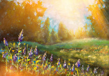 Sunny Flower Landscape - Oil Painting. Beautiful Purple Flowers In The Warm Rays Of The Sun.