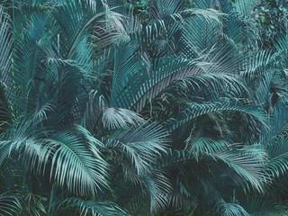 Fototapeta Vintage tropical blue coconut leaves, vintage color tone