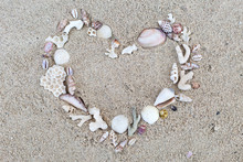 Seashells And Corals Heart Fra...