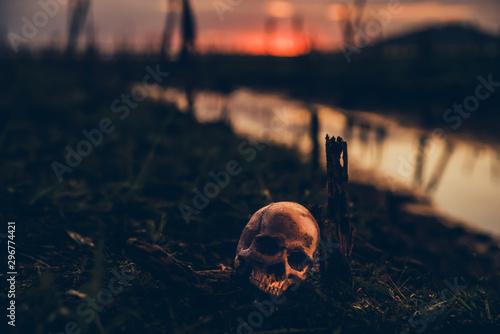 Photo Happy Halloween. Skull and scary scene.