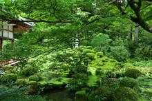 Japanese Garden, Kyoto Japan