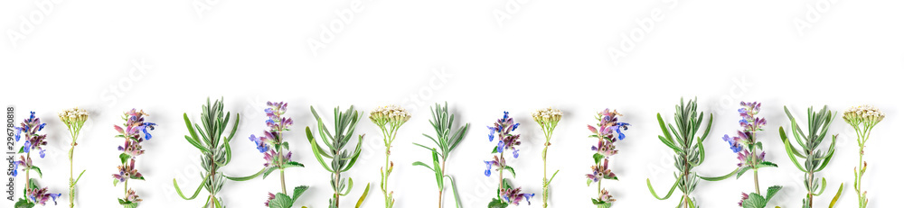 Fototapety, obrazy: Alternative medicine. Medicinal herbs lavender, catnip, yarrow on a white background. Top view, copy space, banner.