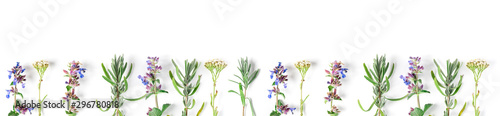 Photo sur Toile Fleuriste Alternative medicine. Medicinal herbs lavender, catnip, yarrow on a white background. Top view, copy space, banner.