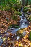 Mały leśny strumyk z wodospadem wczesną jesienią