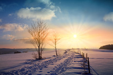 Winter Sunset Landscape With T...