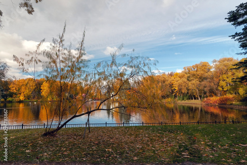 Fototapety, obrazy: Colorful trees and a beautiful rotunda on the banks of a pond in a park on a sunny autumn evening