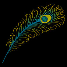 Embroidery Fabric Design Of Peacock Feather