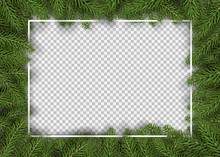 Christmas Fir Tree Border For ...