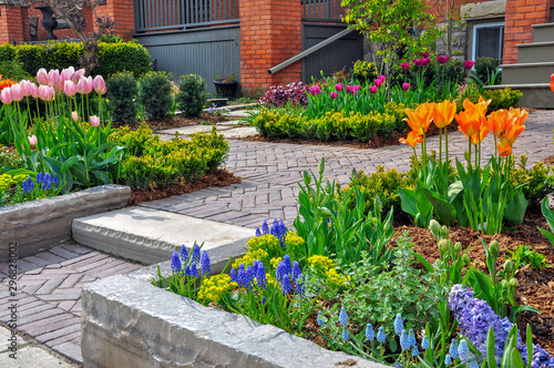Fotografie, Obraz This beautiful, urban front yard spring garden features a large veranda, brick paver walkway, retaining wall with plantings of bulbs, shrubs and perennials for colour, texture and winter interest
