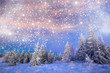 canvas print picture - Majestic winter landscape with snowy fir trees.  Winter postcard.