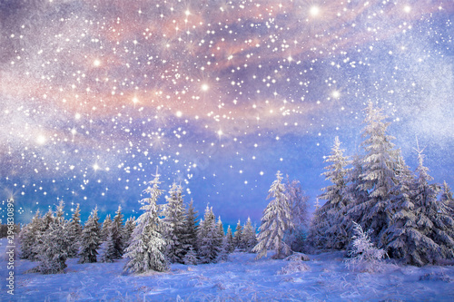 Arbre Majestic winter landscape with snowy fir trees. Winter postcard.