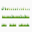 Set of green tufts grass, herbaceous plants. Design elements isolated on white background. Vector illustration.