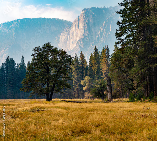 Yosemite valley medeow in the fall Canvas Print