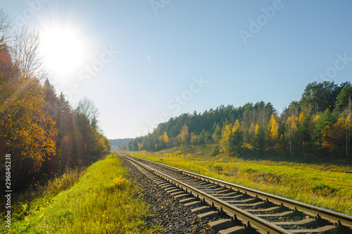 Tuinposter Spoorlijn railway track in the autumn forest. railway in the autumn evening