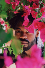 Man Looking Through Bright Pink Flowers