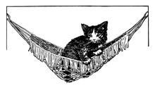Cat In Hammock Vintage Illustr...