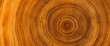 Leinwanddruck Bild Detailed warm dark brown and orange tones of a felled tree trunk or stump. Rough organic texture of tree rings with close up of end grain.