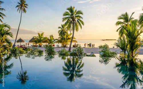 Foto auf Gartenposter Baume Palms over an infinity pool on the beach, French Polynesia