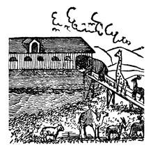 Noah Ark Vintage Illustration