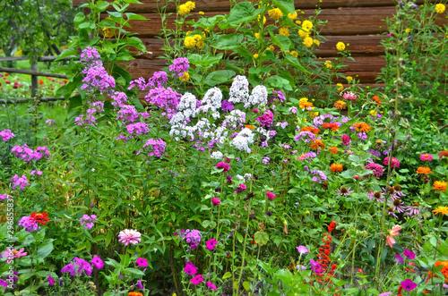 Beautiful rural flowerbed Fototapet