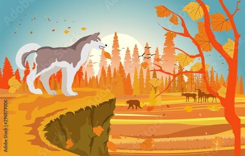 The  dog on the hunt, autumn forest landscape, vector illustration.